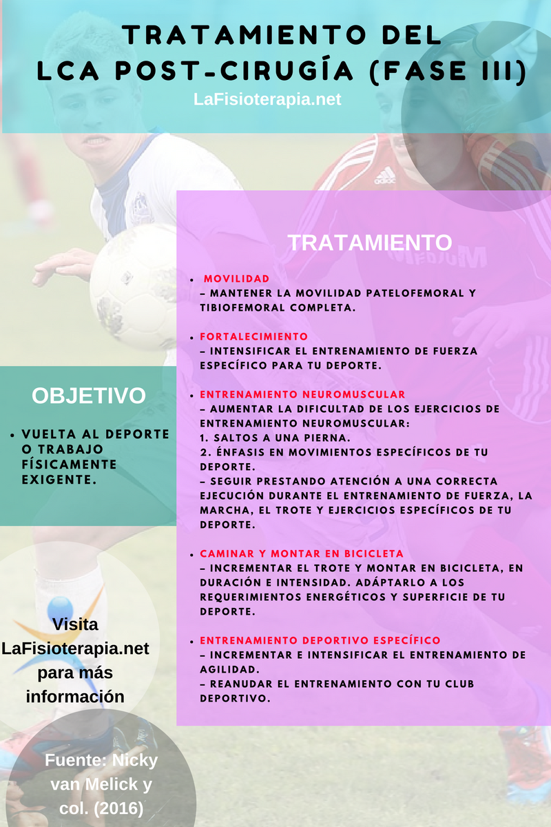 LaFisioterapia.net (LaFisioterapia) on Pinterest
