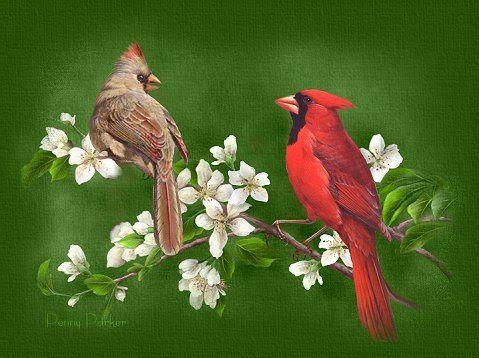 figuras aves - Loide Figuras - Álbumes web de Picasa