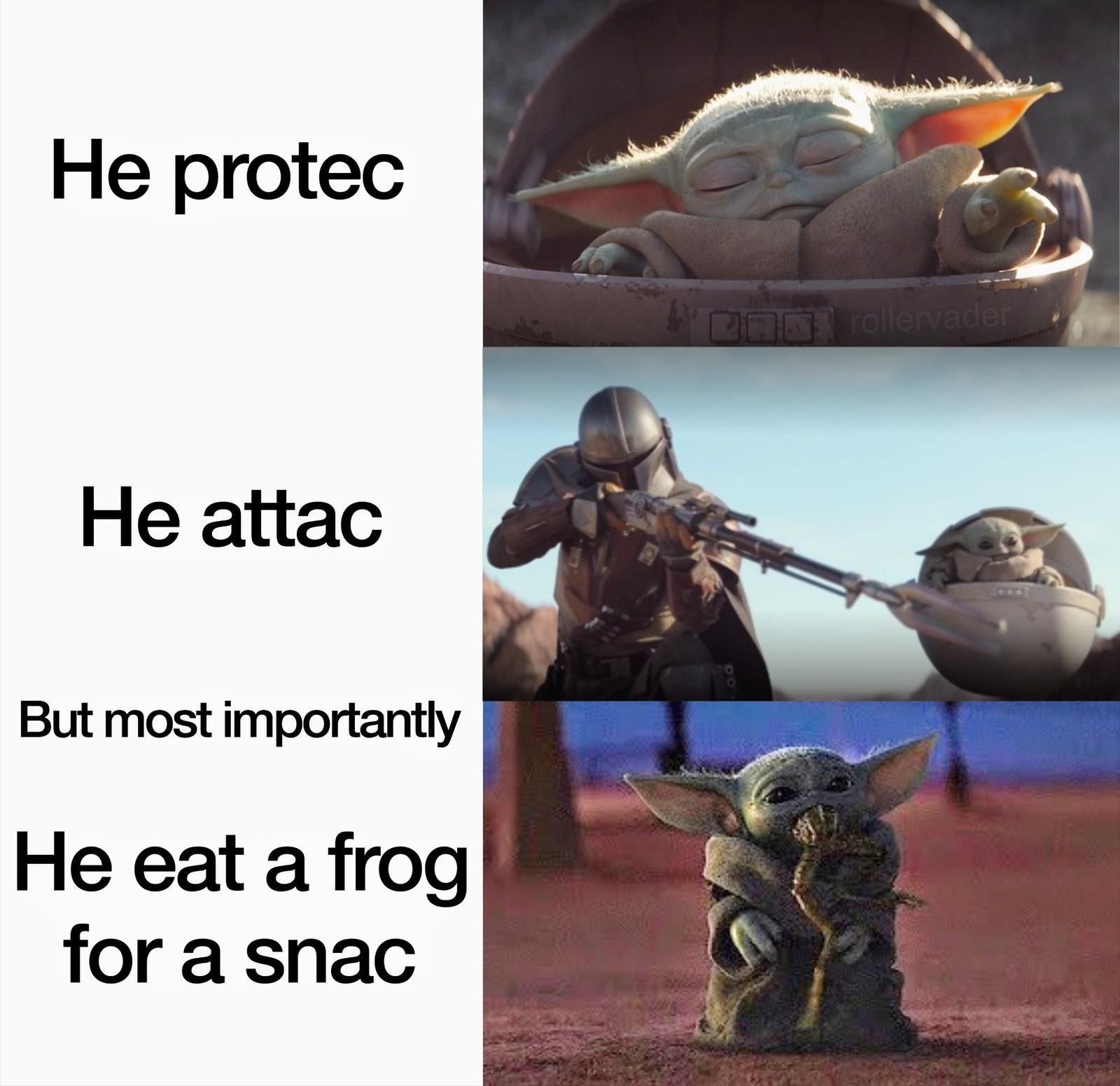 Finally Some Good Froggin Food Funny Star Wars Memes Yoda Meme Star Wars Jokes