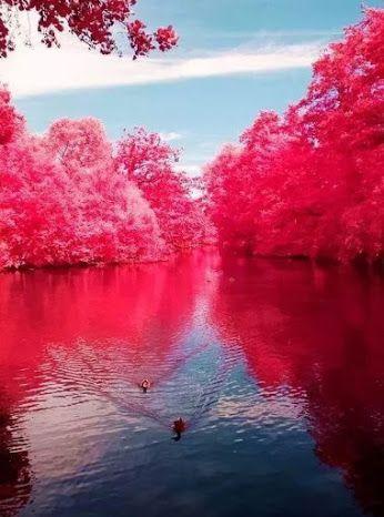 Cherry River West Virginia
