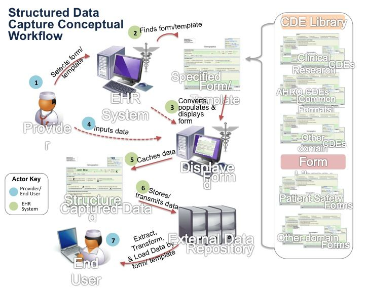 Structured Data Conceptual Workflow Health IT Pinterest - data flow chart template