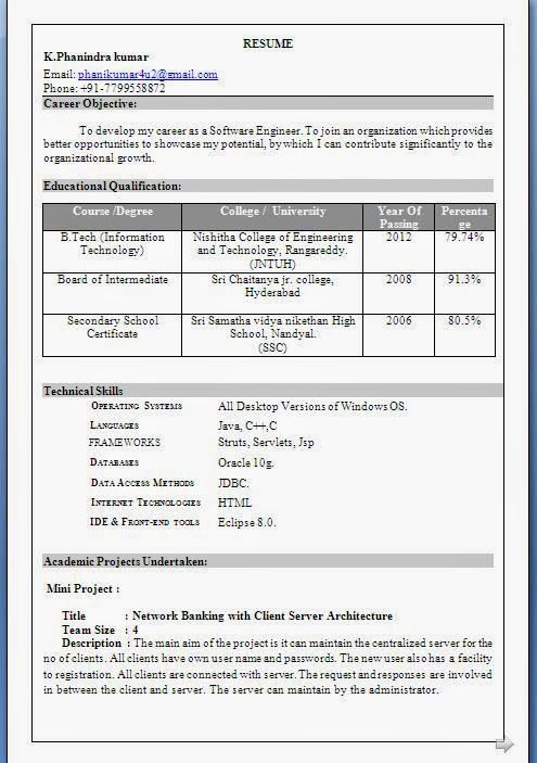 curriculum vitae 2013 Sample Template Example ofExcellent - what are my career objectives