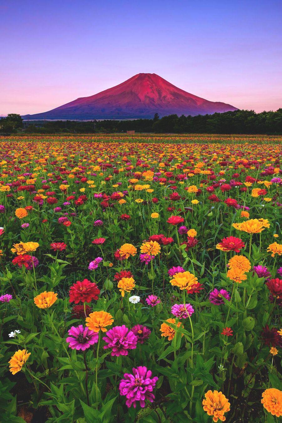 Primavera fotos paisajes