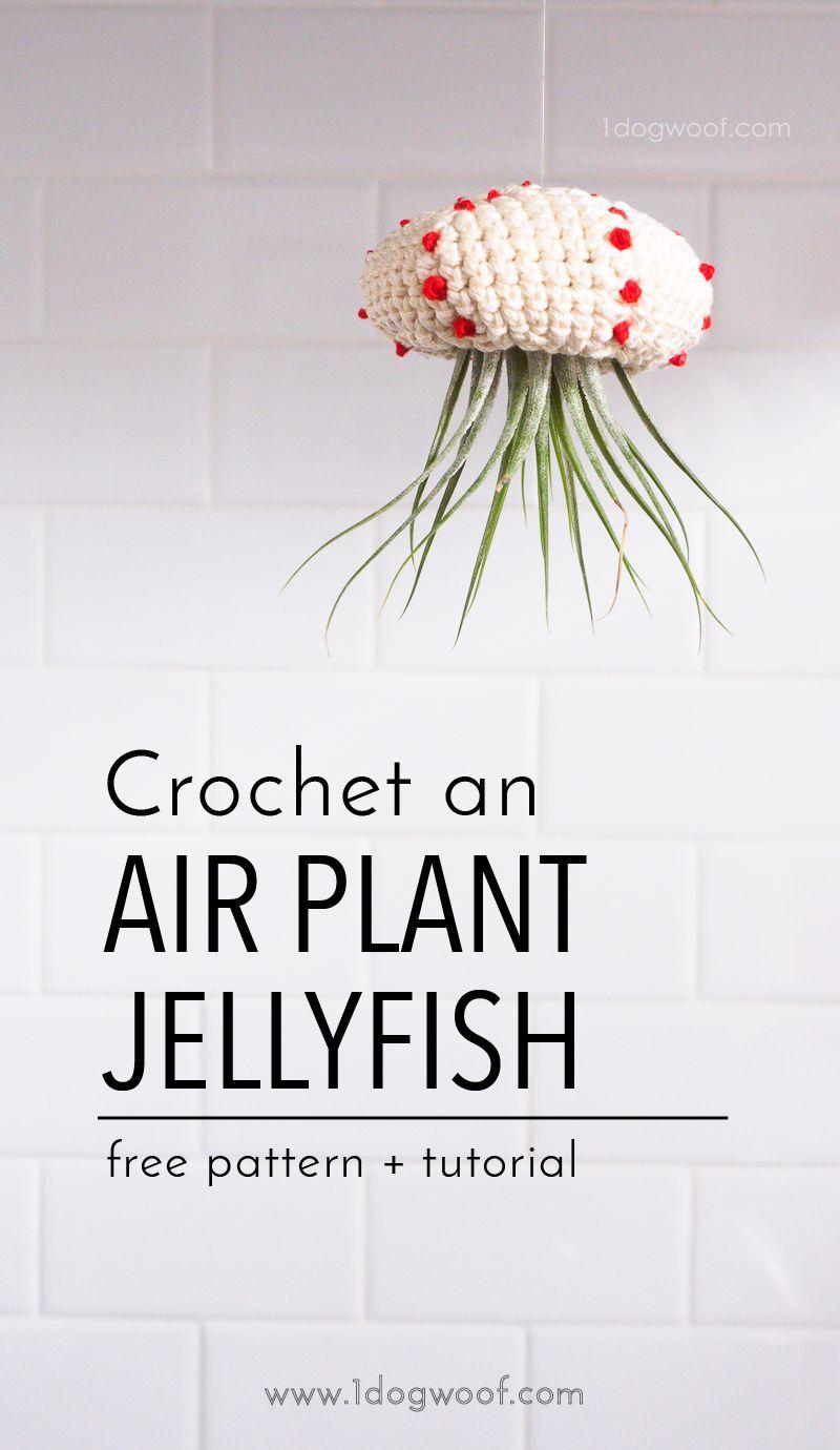 Crochet Air Plant Jellyfish Tutorial | Tejido, Macetas y Originales