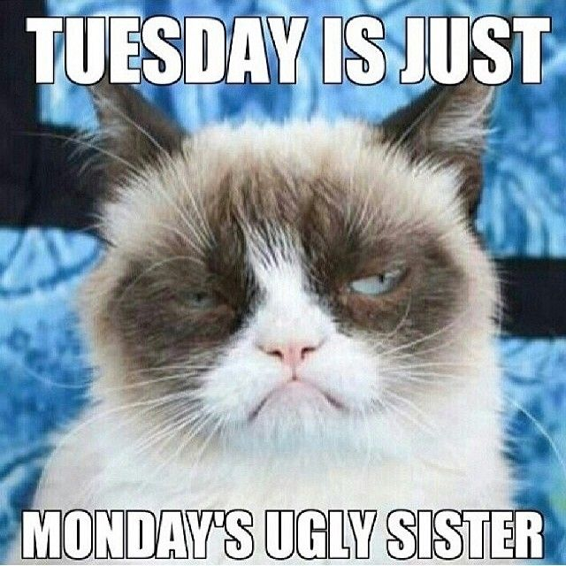 Funny Monday Meme : Tuesday is just mondays ugly sister funny meme monday