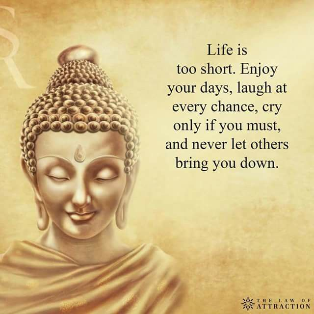 Buddha Quote On Life Magnificent Pinmagalys Melendezon Wise Words  Pinterest  Buddha