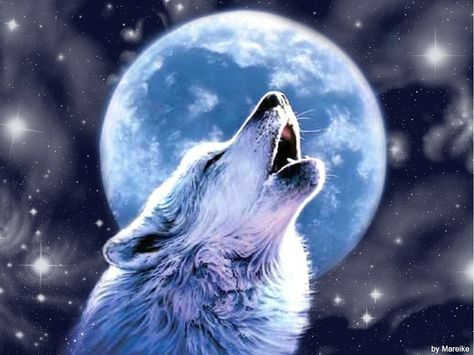 волк воет на луну - Поиск в Google | Рисунки животных ...