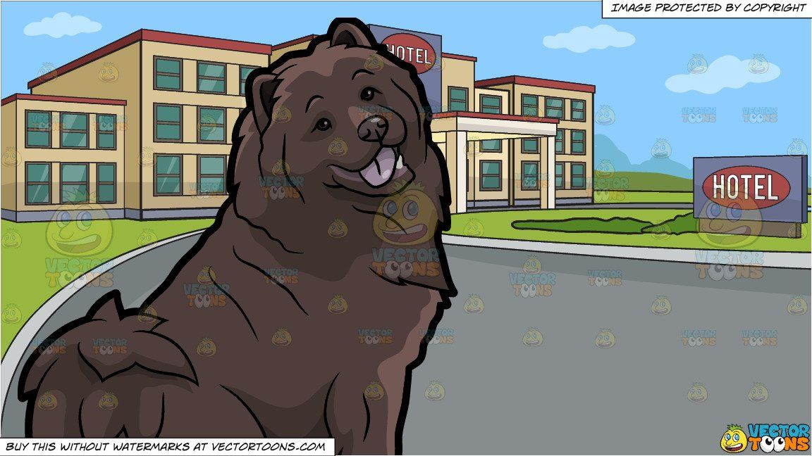 A Pretty Chocolate Brown Chow Chow Dog And Outside Of A Hotel