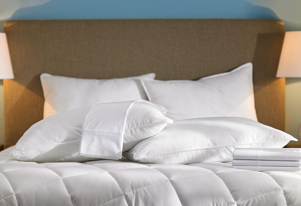 hampton hotel pillows shop hampton now shop hampton pinterest