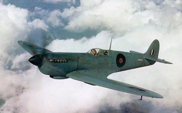 Unarmed reconnaissance Spitfire PR XI from 16th reconnaissance squadron RAF, may 1943