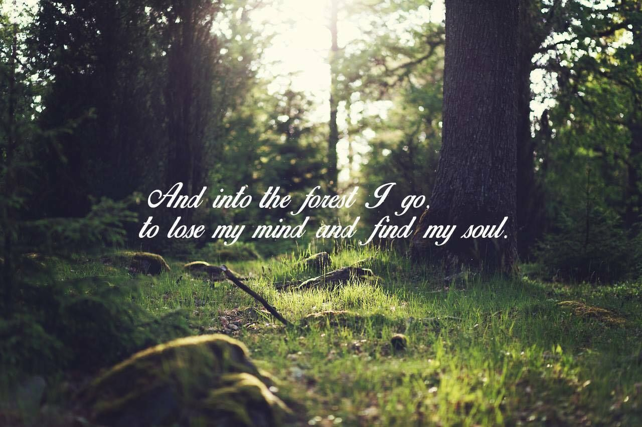 And Into The Forest I Go To Lose My Mind And Find My Soul Aging