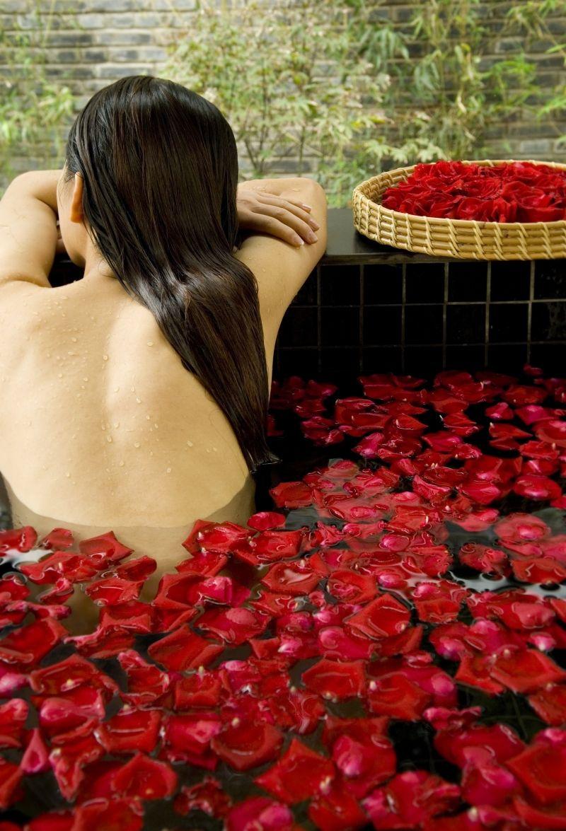 Amazon.com: Nude Person Portrait Red Rose Shower Splash