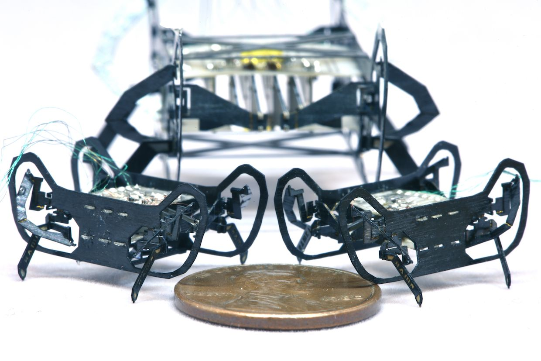HAMRJr Is a Speedy Quadrupedal Robot the Size of a Penny