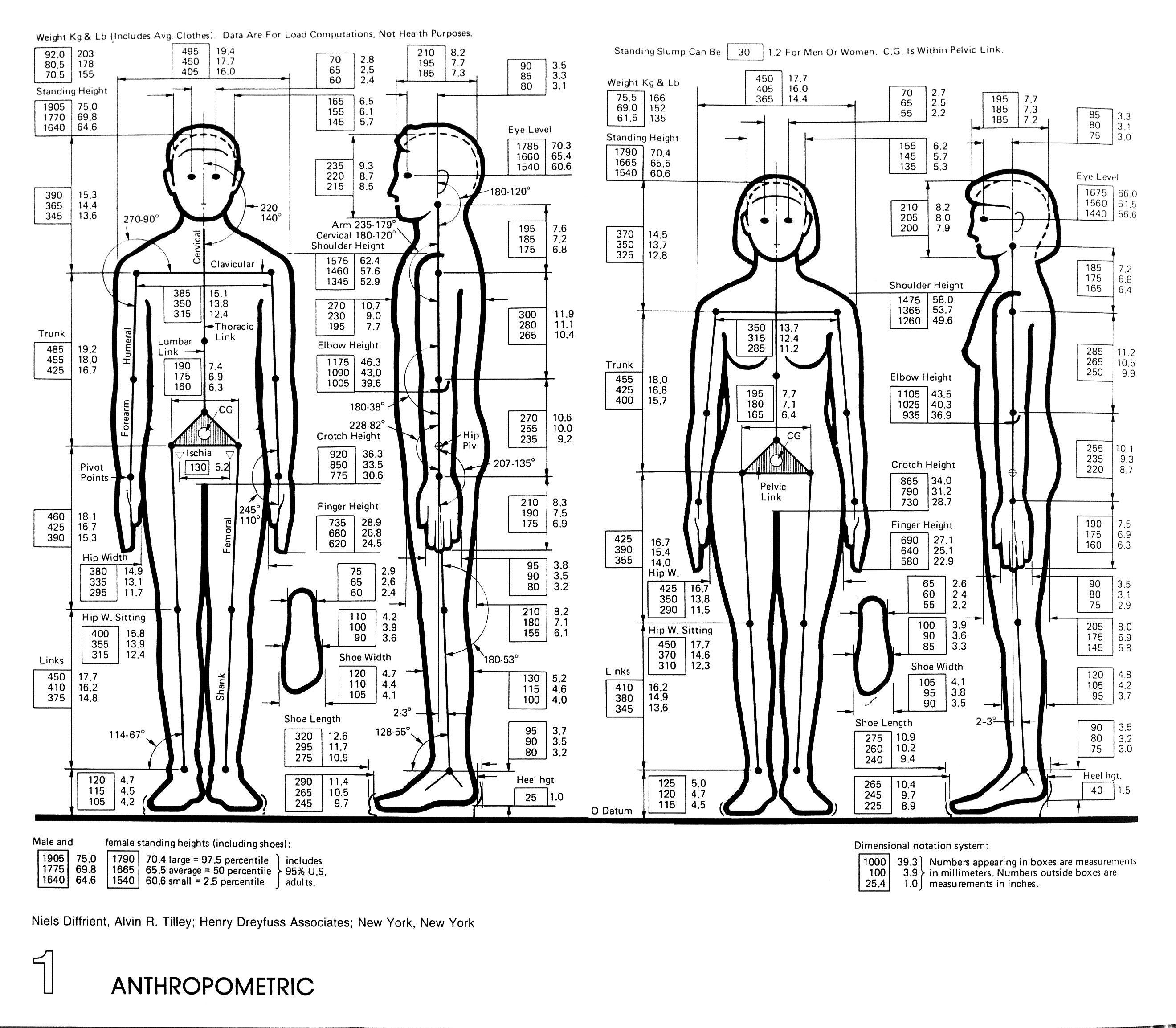 Architectural Graphic Standards Pinterest