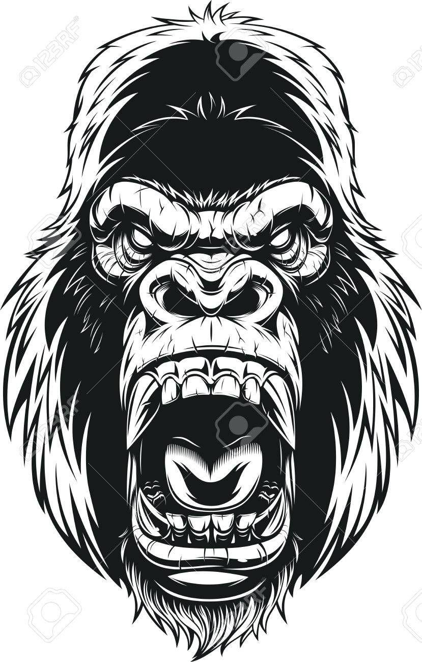 4dbbb92df Vector - Vector illustration, ferocious gorilla head on background