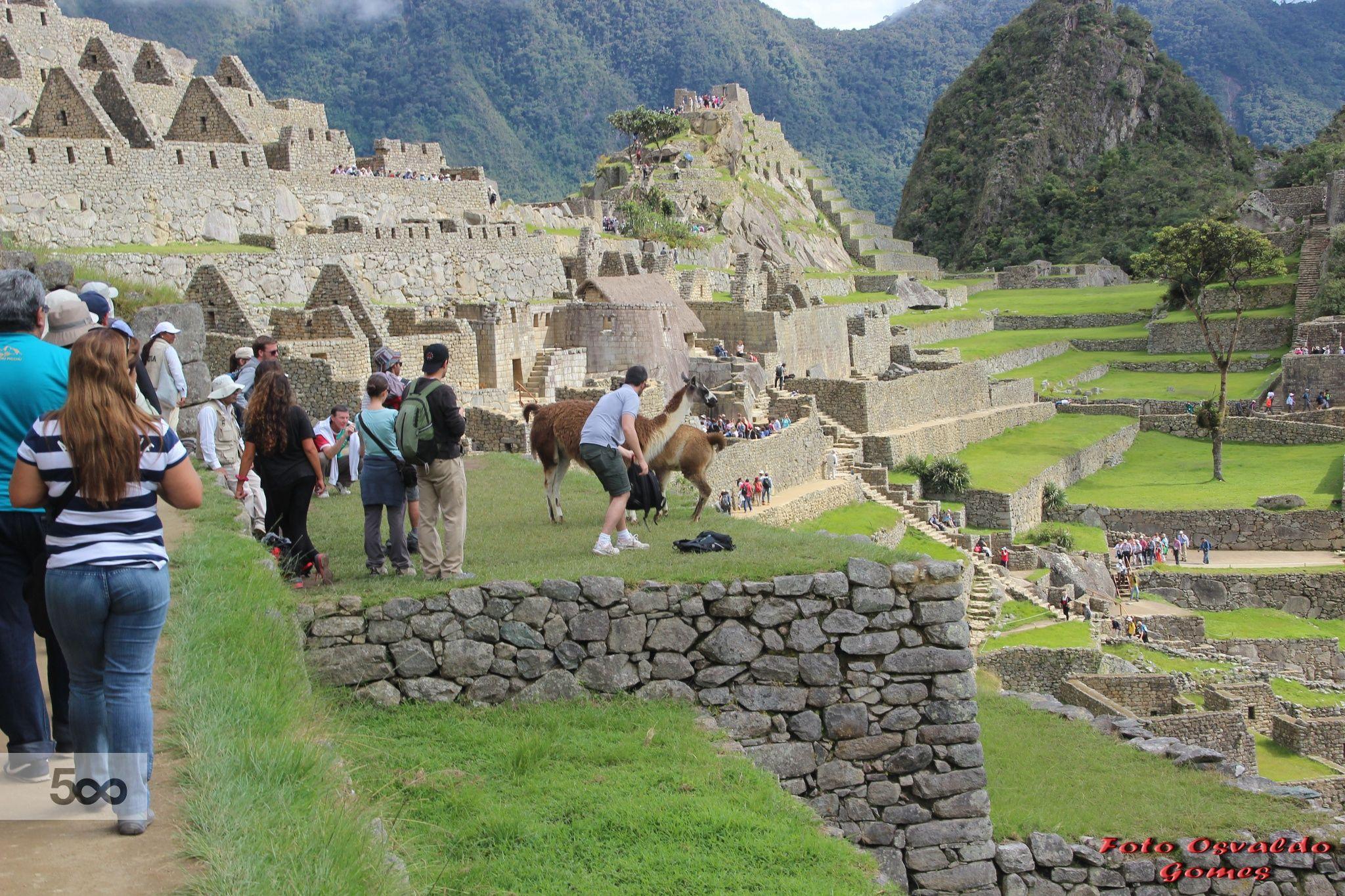"""Machupicchu, também conhecido como Machu Picchu é uma cidade no Peru às margens do rio Urubamba (Vilcanota), cujo nome em quechua é Machu Pikchu (""""velha montanha"""")"""