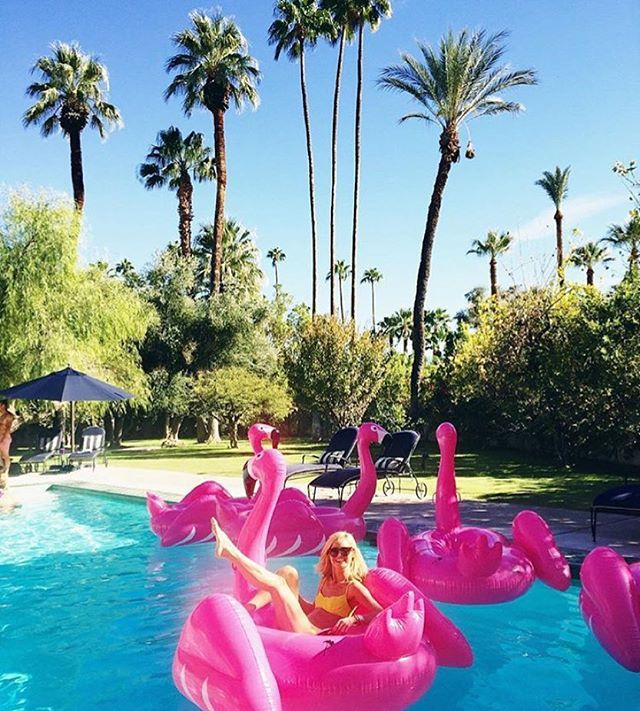 Flamingo Pool Float Party Moderner Retro Und Hawaii