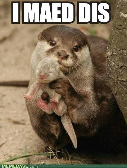 Otter and Baby