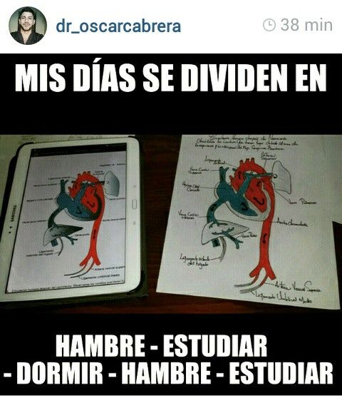 Amante a la medicina ..
