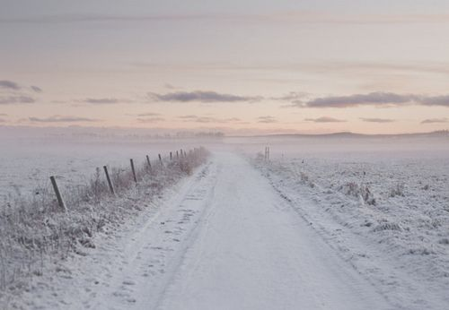 mmm, fresh snow in the country...