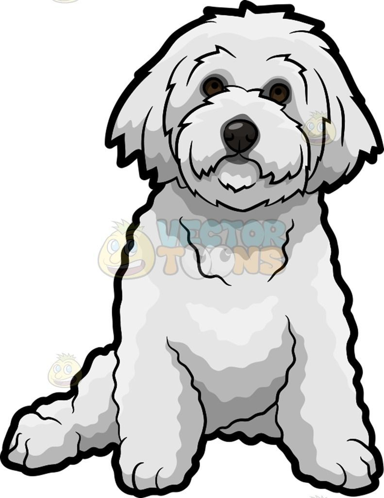 Pin On Cosas Que Me Gustan In 2021 Cartoon Dog Bichon Frise Drawing White Fluffy Dog