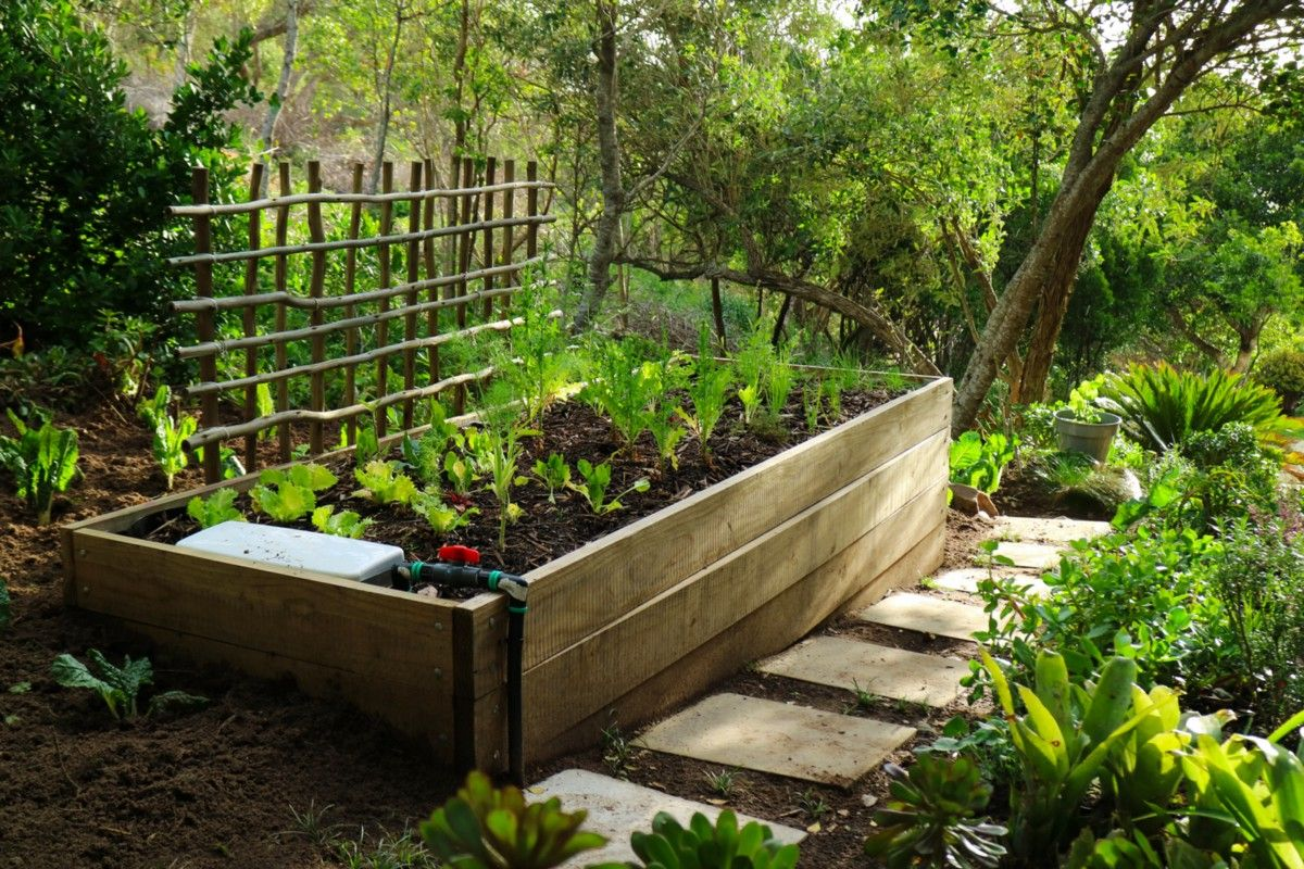 How to Build a SubIrrigated Planter (AKA Wicking Bed