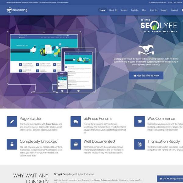 The Top Web Design Companies Of 2019 Chicago Seo Lyfe Marketing Agency Fun Website Design Web Design Company Web Design