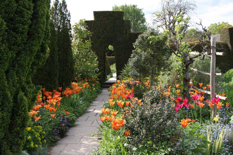 Great Dixter In Kent Tulips The High Garden East Susgarden