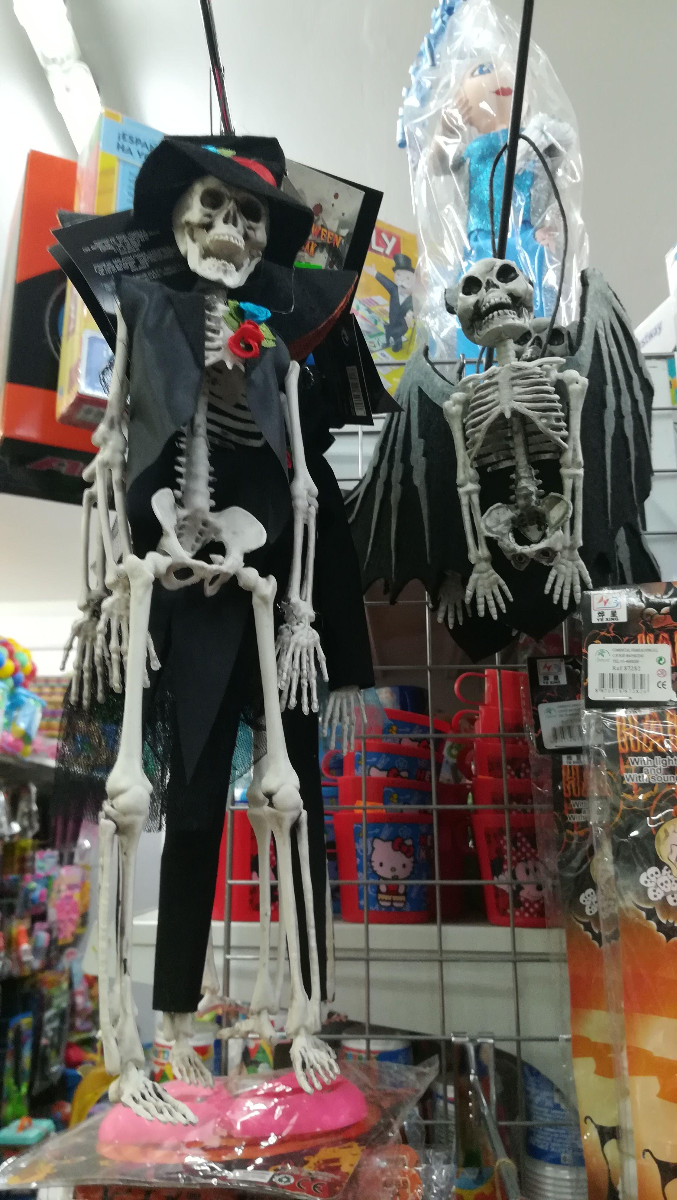 skeletons Anime, Art