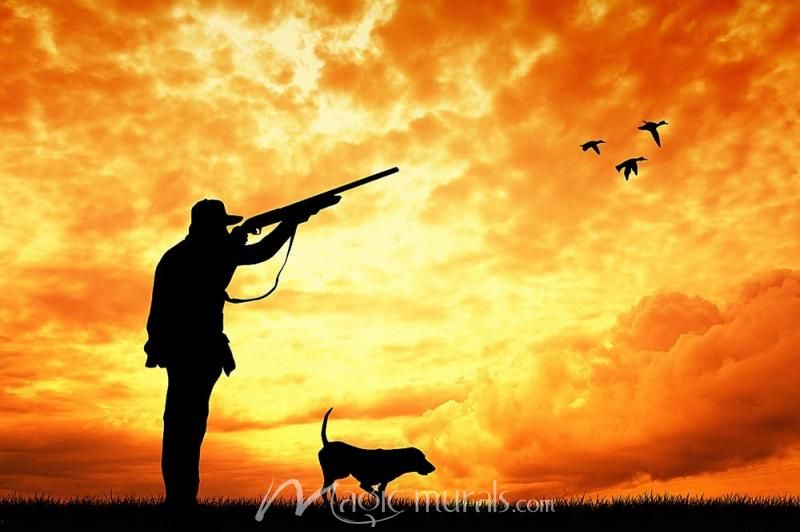 Duck Hunt Sunset Duck Hunting Hunting Wallpaper Duck Silhouette Duck hunting wallpaper for iphone