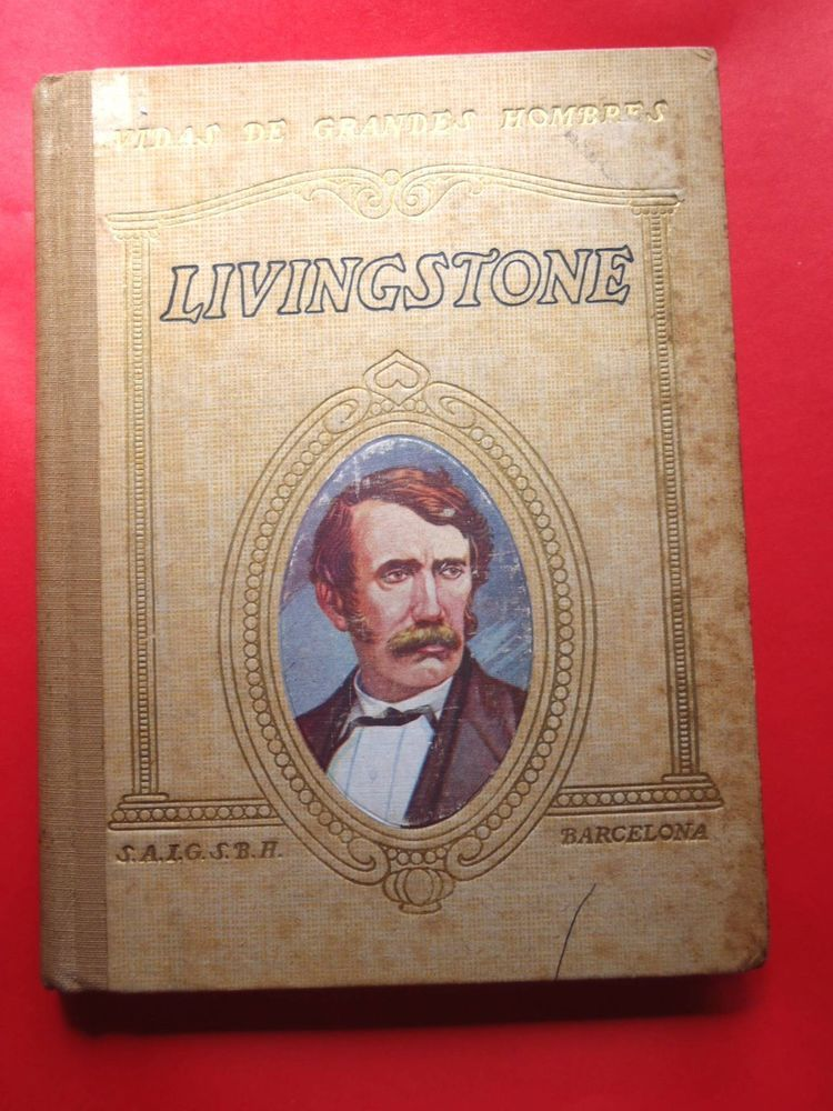 Into Africa The Epic Adventures of Stanley  Livingstone by Martin