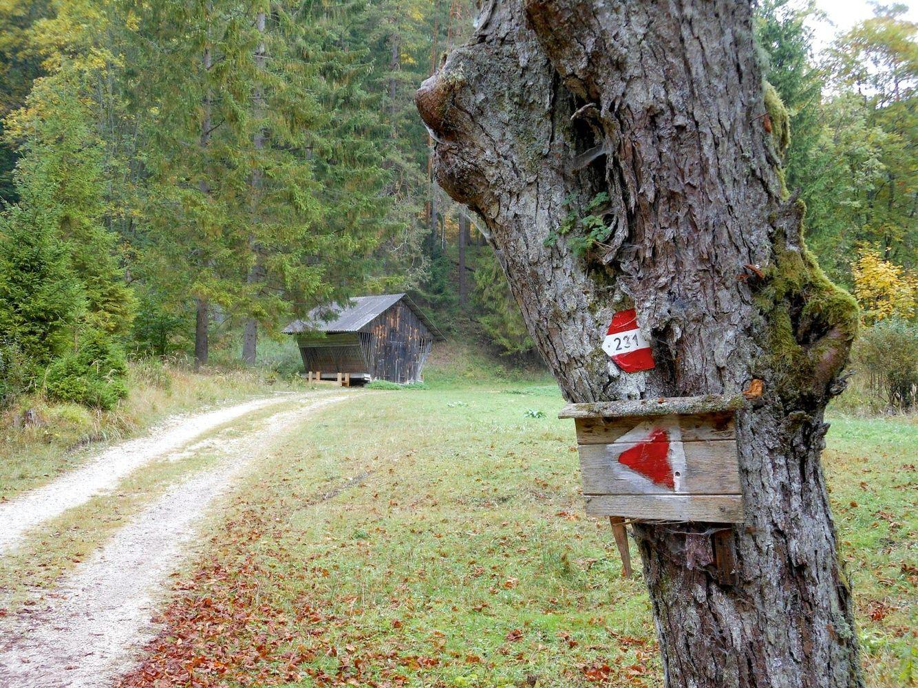 Auf den Weg zum Unterberg (mit Bildern) Berg