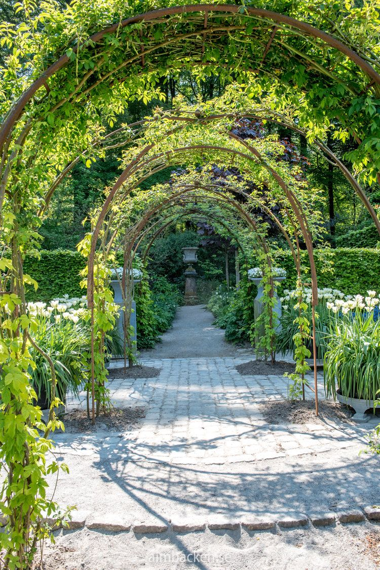OHH  SOOO DIVINE  LOVE THE STRUCTURE OF THIS RATHER FORMAL GARDEN IT LOOKS SIMPLY STUNNING