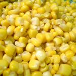 Sweet corn is delicious with just a bit of salt, but it's also wonderful in soup and salad, and of course cornmeal makes terrific bread. Take look at these vegetarian recipes featuring sweet corn or cornmeal.