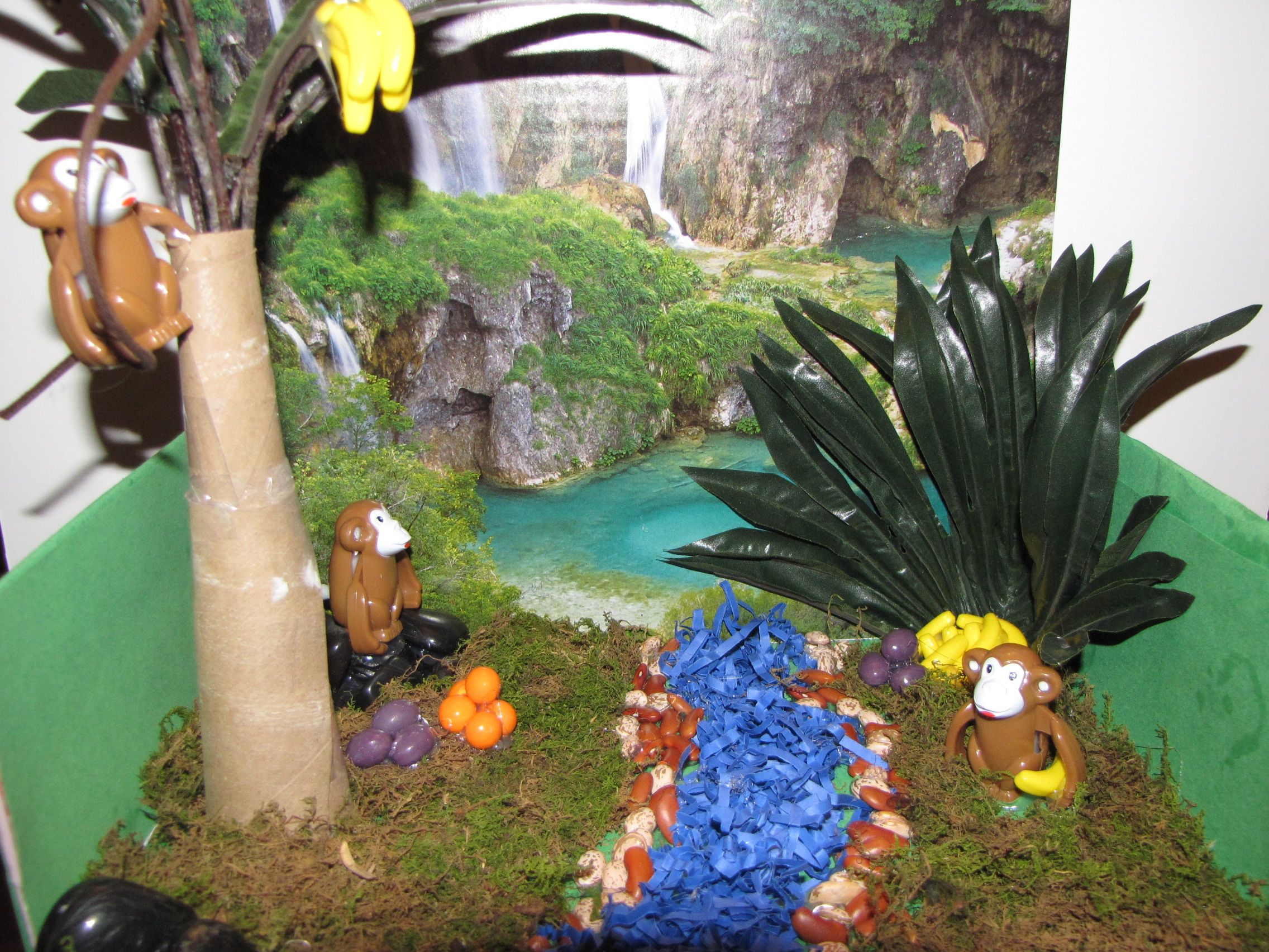 My Son Had A Diorama Habitat That Was Due Yesterday. He To