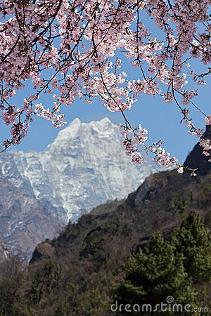 """Spring in the Himalayas. Mt Everest.   NEPAL -- For use with Jon Krakauer's """"Into Thin Air"""" (non-fiction)"""