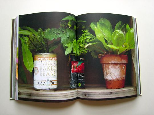 Jamie Oliver book - Garden. Vibrant greens, great contrast of colour.