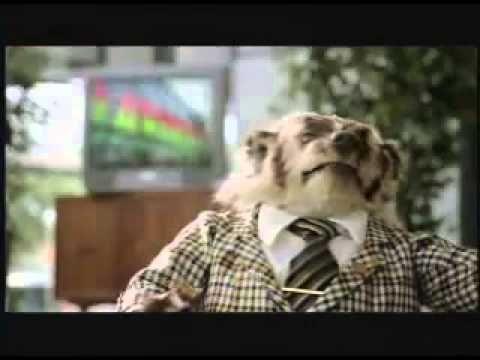 1 Badger Car Commercials 6 Minute Compilation Johnson Automotive