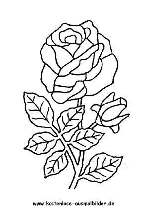Rosen Ausmalbild Blumenzeichnung Ausmalbilder Ausmalen