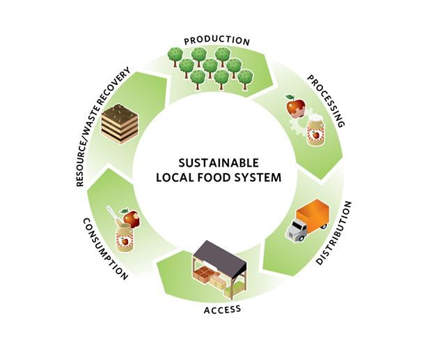 Food Systems | Sustainable Food | Pinterest | Food system ...