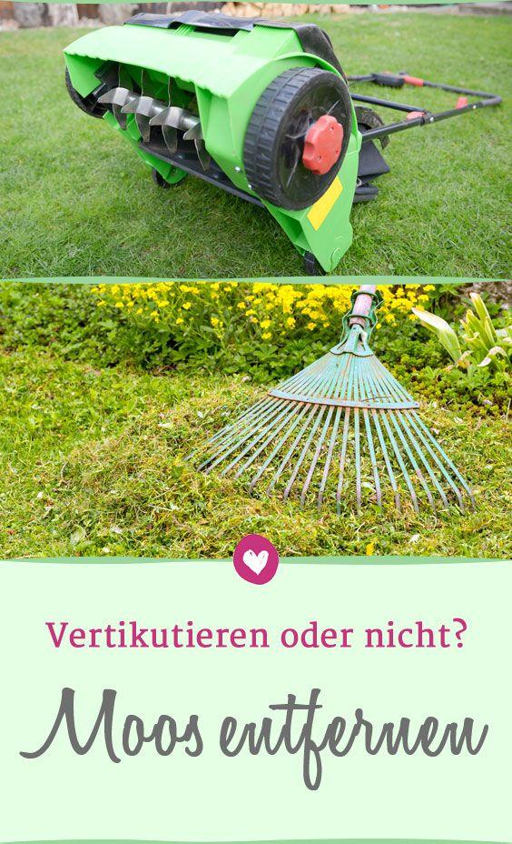 So Lassen Sich Moos Und #Unkraut Im #Rasen Dauerhaft Bekämpfen. #Garten