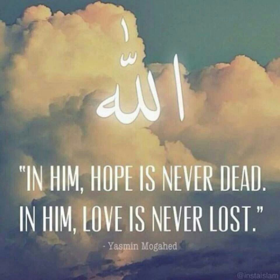 In Him hope is never dead In Him love is never