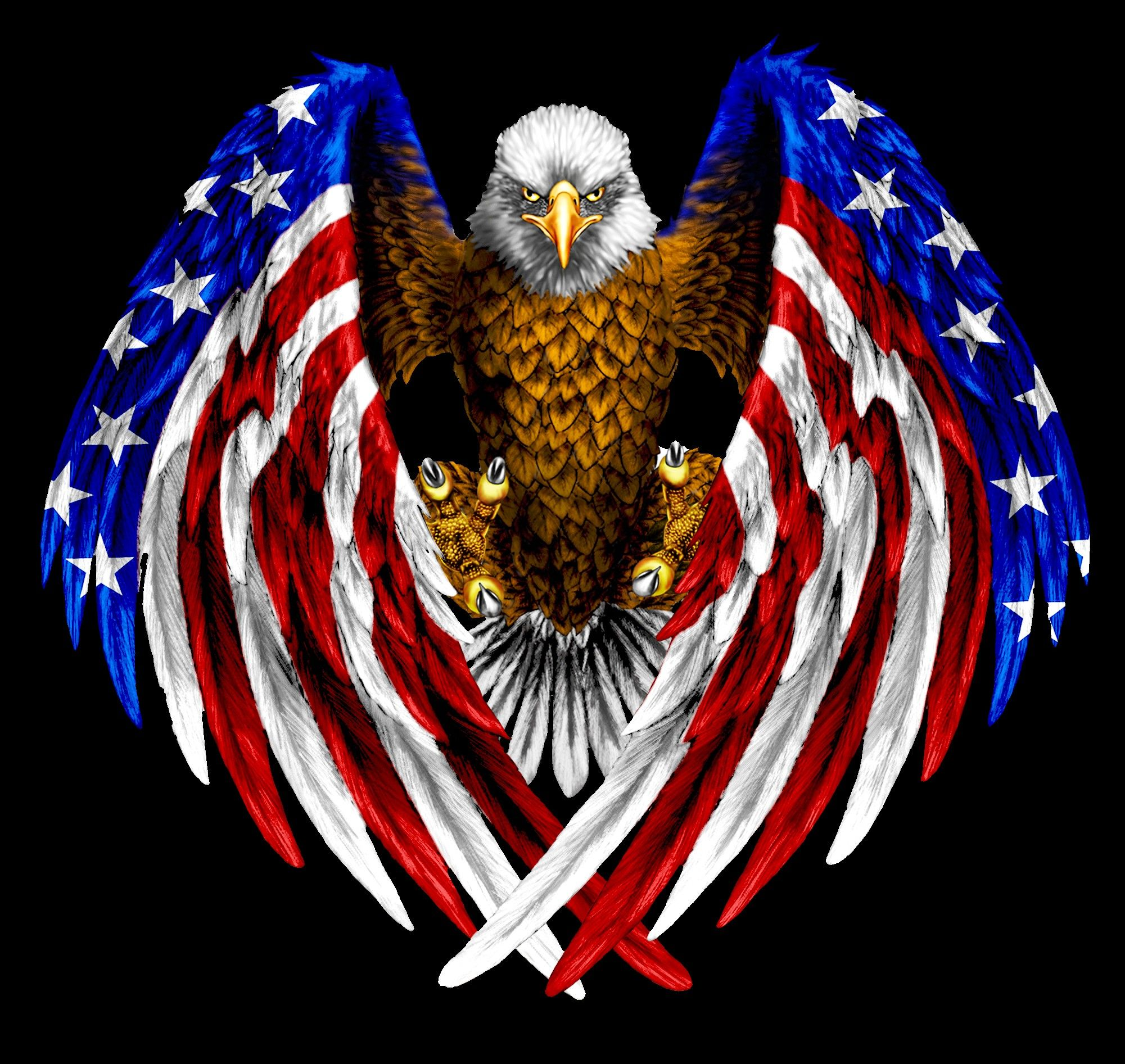 Image Result For Eagle Clipart Fashion Likes Inspo American Flag