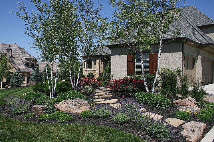 River birch home run rose catmint shasta daisy sedum flagstone steppers front yard - Garden design ks ...