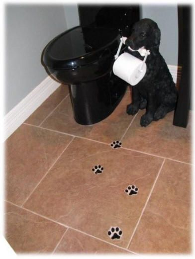 office pet ideas. Paw-print Tiles And Dog TP Holder! Office Pet Ideas