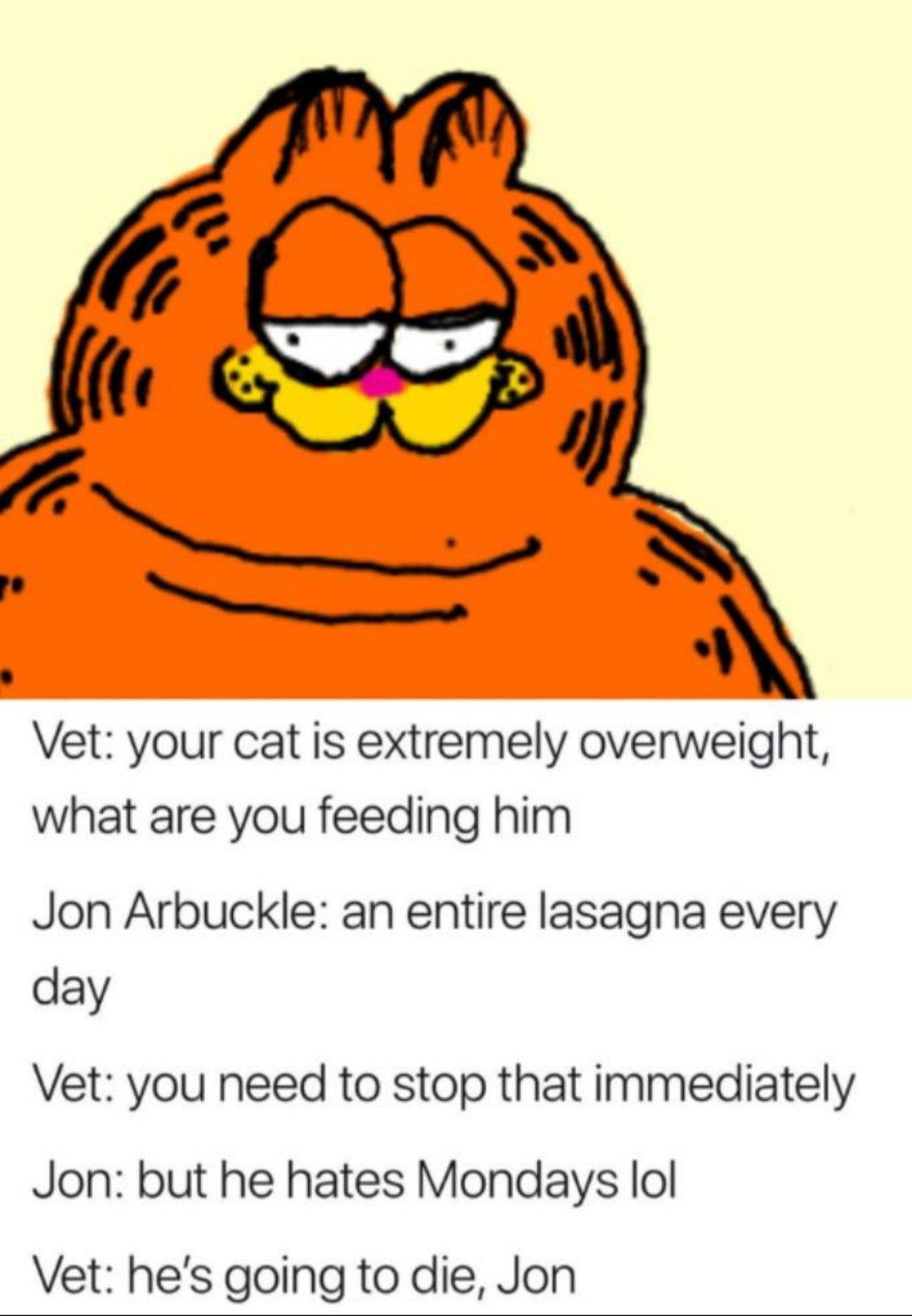 Garfield Veterinarian Jon Arbuckle Your Cat Is Extremely Overweight What Are You Feeding Him An Entire Lasagna Every Day Yo Funny Memes Memes Garfield