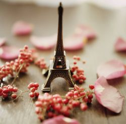 A small Eiffel Tower is always a good souvenir to bring back home :).    Find out more on our blog: http://cadran-hotel-gourmand.com/