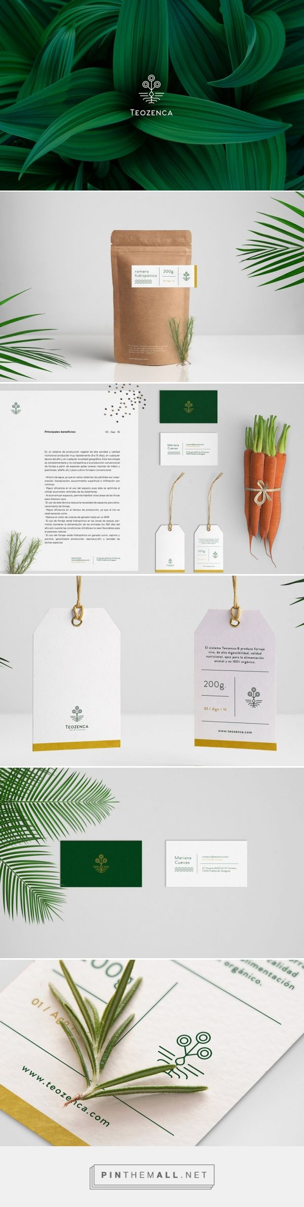 Concepts We Wish Were Real — The Dieline - Branding & Packaging Design…