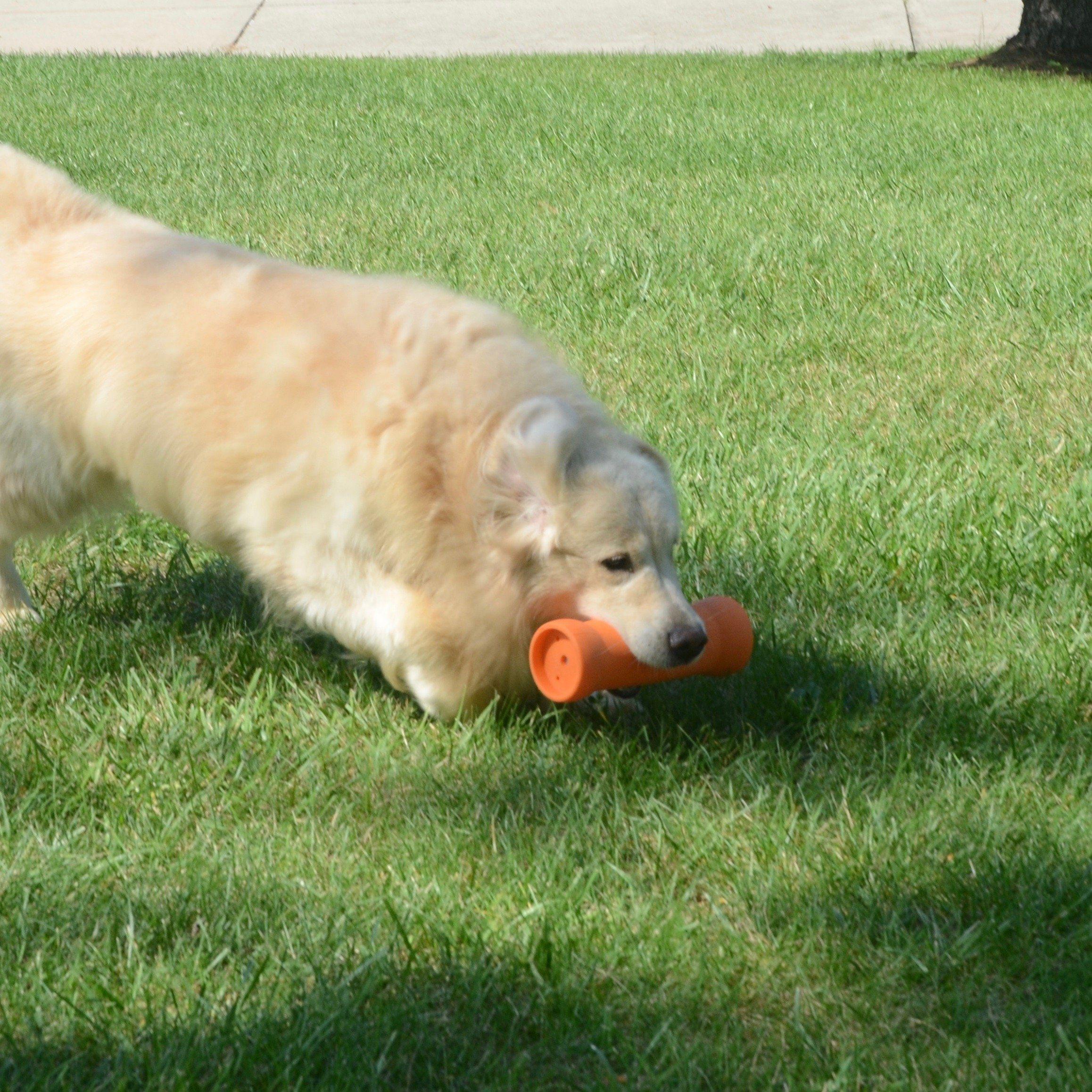 Crinkit 16 9oz Water Bottle Dog Toy With Crunch Large Extra