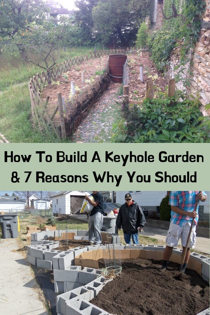 How To Build A Keyhole Garden 7 Reasons Why You Should In 2020